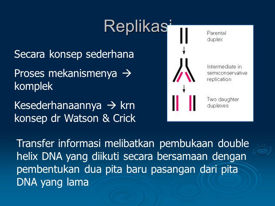 Replikasi Secara konsep sederhana Proses mekanismenya  komplek
