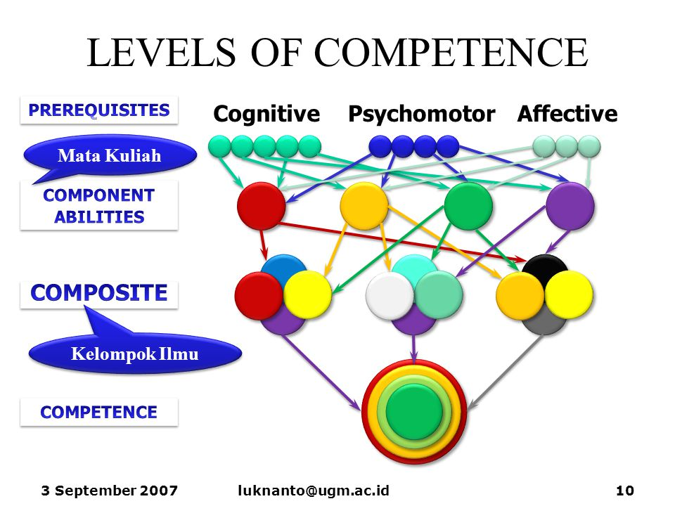 LEVELS OF COMPETENCE Cognitive Psychomotor Affective COMPOSITE