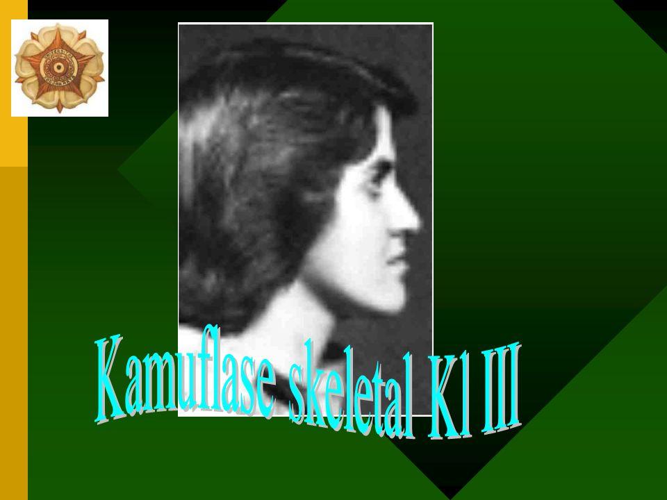 Kamuflase skeletal Kl III