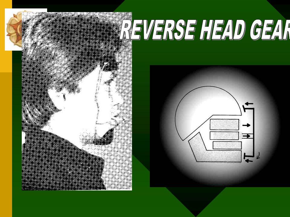 REVERSE HEAD GEAR