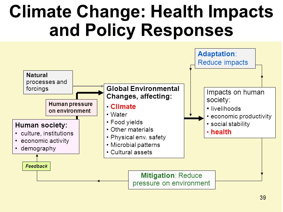Climate Change: Health Impacts and Policy Responses
