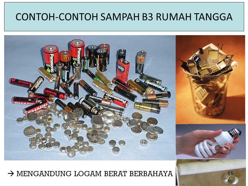 CONTOH-CONTOH SAMPAH B3 RUMAH TANGGA