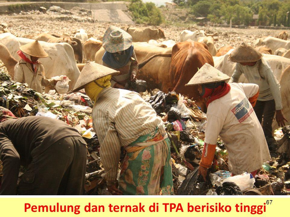 Pemulung dan ternak di TPA berisiko tinggi