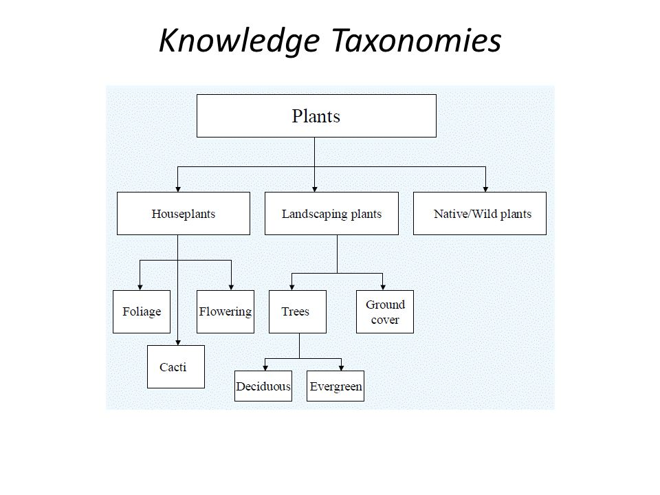 Knowledge Taxonomies