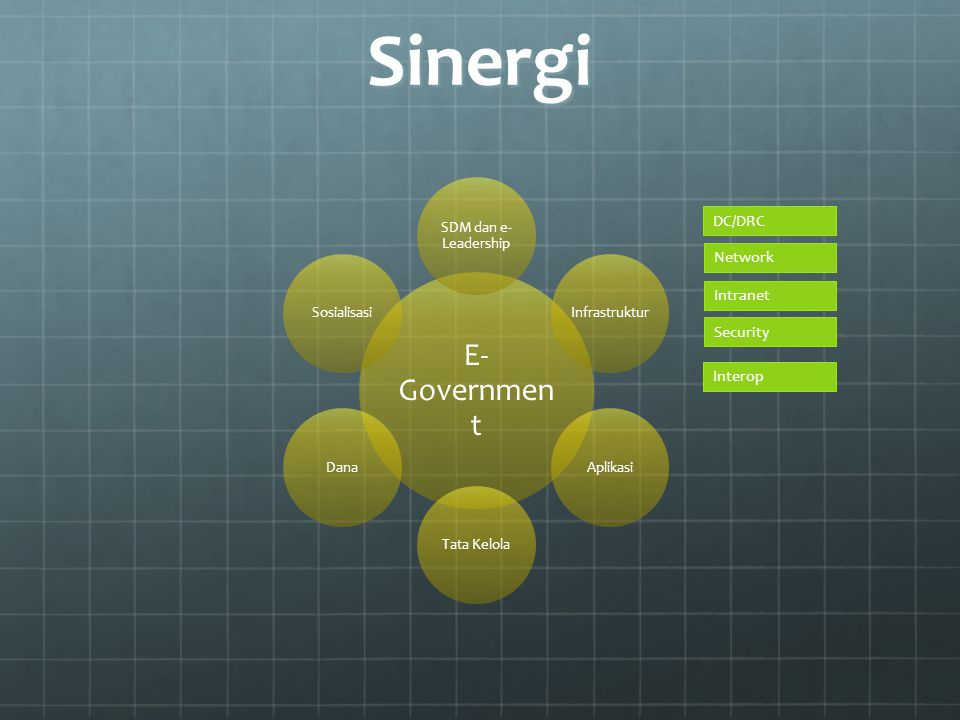 Sinergi E-Government DC/DRC Network Intranet Security Interop