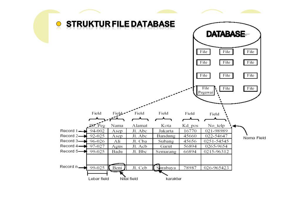 Struktur File Database