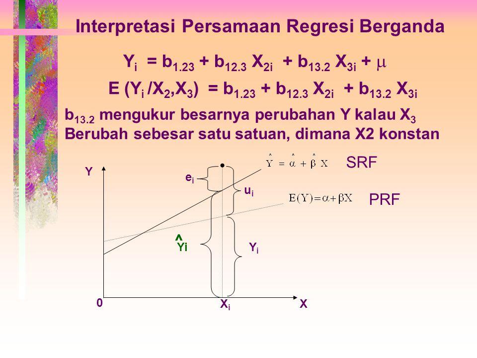 Interpretasi Persamaan Regresi Berganda