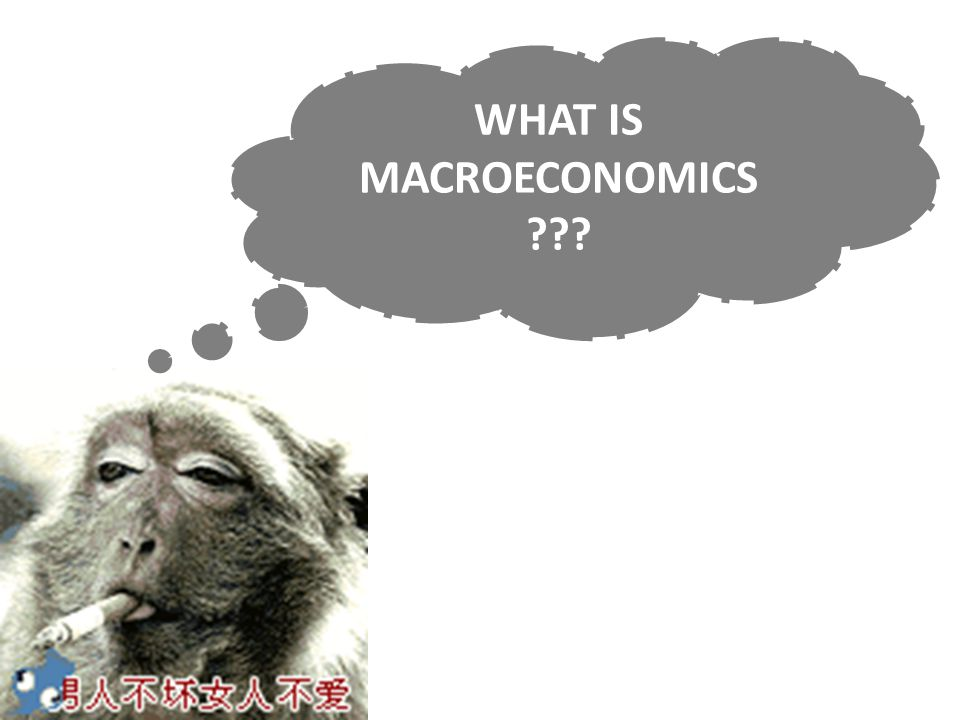 WHAT IS MACROECONOMICS