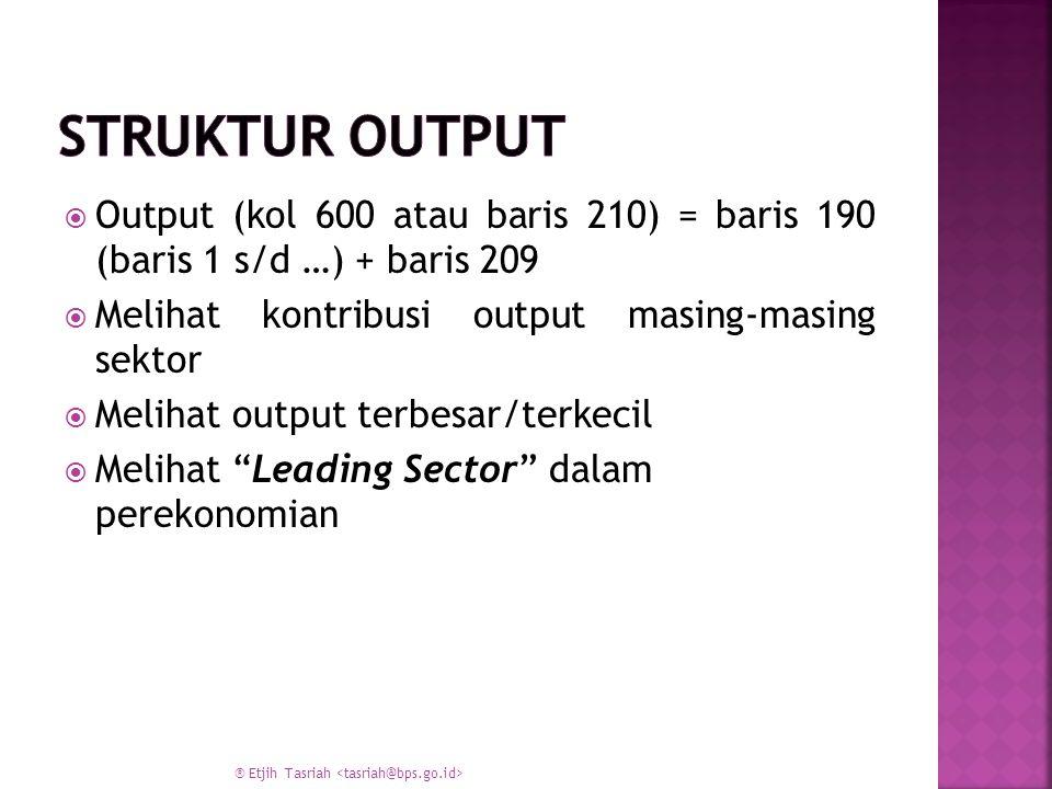 Struktur Output Output (kol 600 atau baris 210) = baris 190 (baris 1 s/d …) + baris 209. Melihat kontribusi output masing-masing sektor.