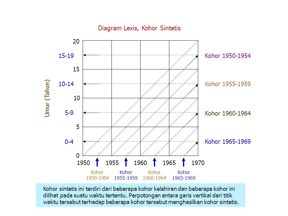 Diagram Lexis, Kohor Sintetis