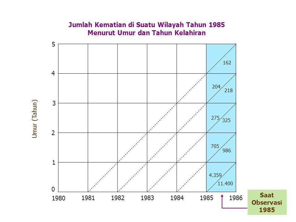 Jumlah Kematian di Suatu Wilayah Tahun 1985 Menurut Umur dan Tahun Kelahiran