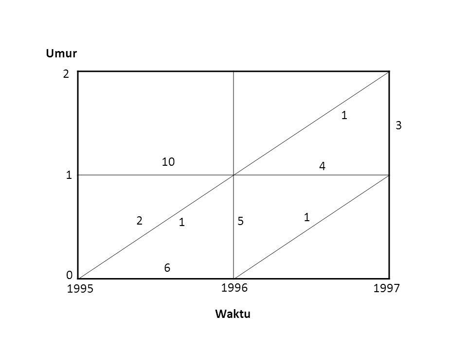 Umur 2 1 3 10 4 1 1 2 1 5 6 1995 1996 1997 Waktu
