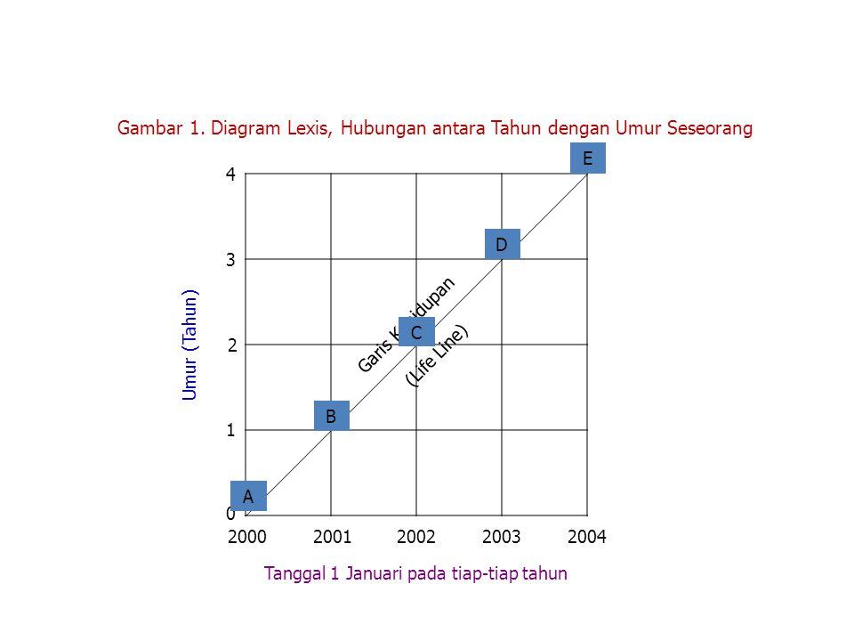 Gambar 1. Diagram Lexis, Hubungan antara Tahun dengan Umur Seseorang