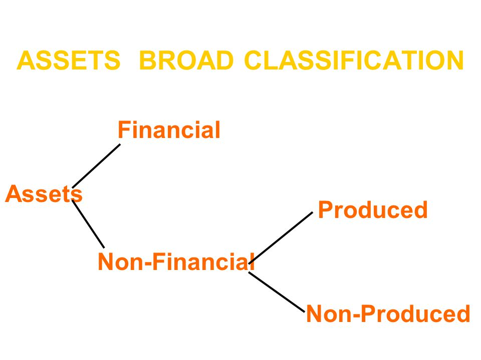 ASSETS BROAD CLASSIFICATION