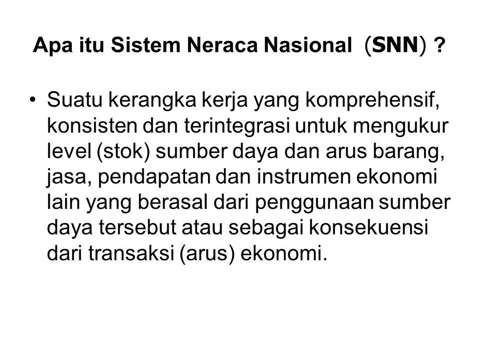 Apa itu Sistem Neraca Nasional (SNN)