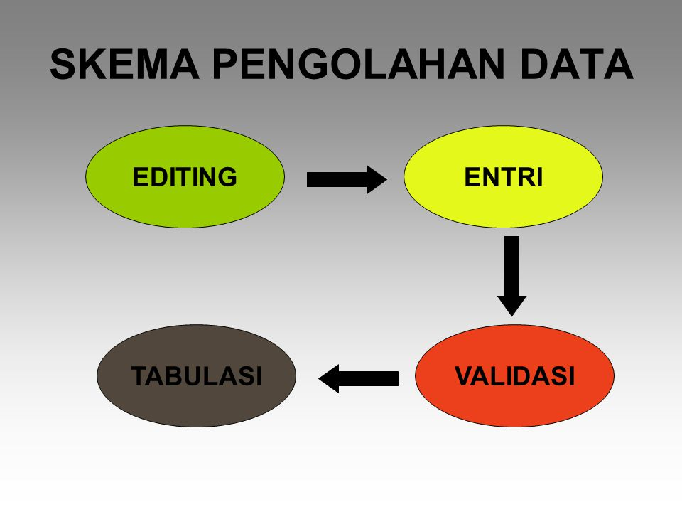 SKEMA PENGOLAHAN DATA EDITING ENTRI TABULASI VALIDASI