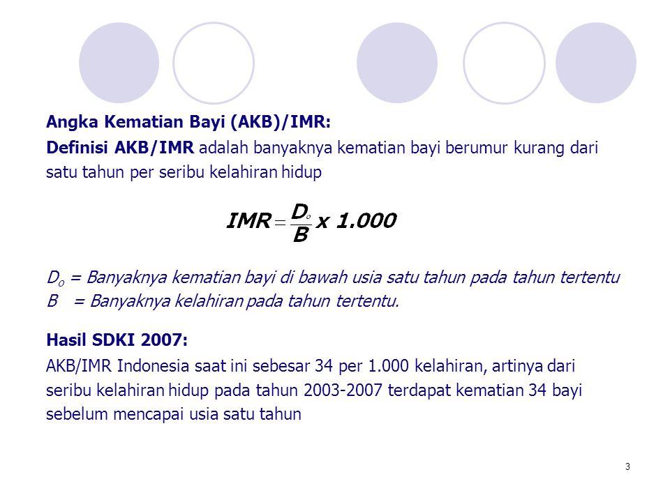 Angka Kematian Bayi (AKB)/IMR: