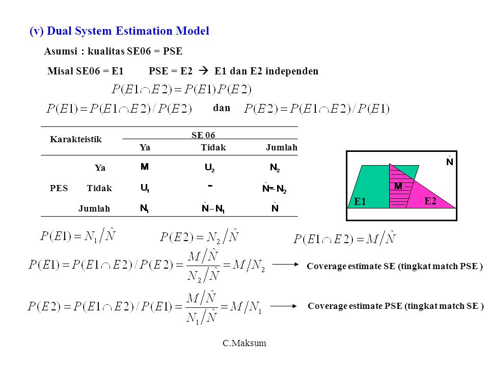 (v) Dual System Estimation Model