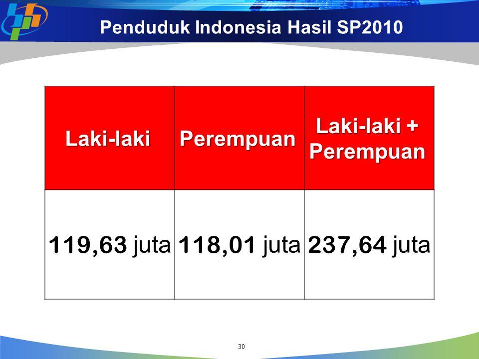 Penduduk Indonesia Hasil SP2010