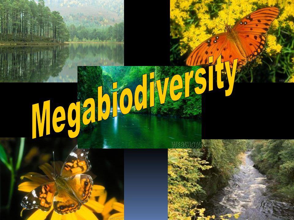 Megabiodiversity