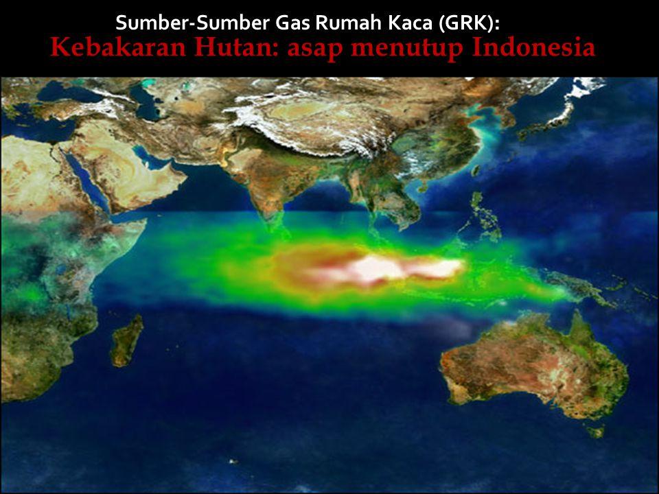 Kebakaran Hutan: asap menutup Indonesia