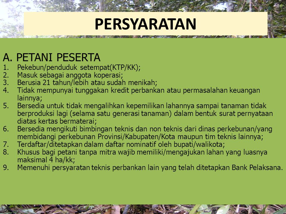 PERSYARATAN A. PETANI PESERTA Pekebun/penduduk setempat(KTP/KK);
