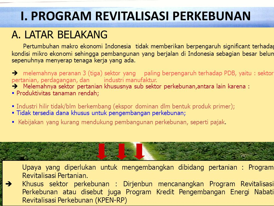 I. PROGRAM REVITALISASI PERKEBUNAN