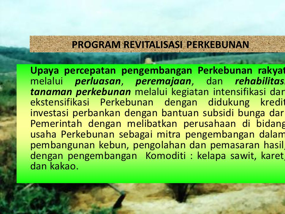 PROGRAM REVITALISASI PERKEBUNAN
