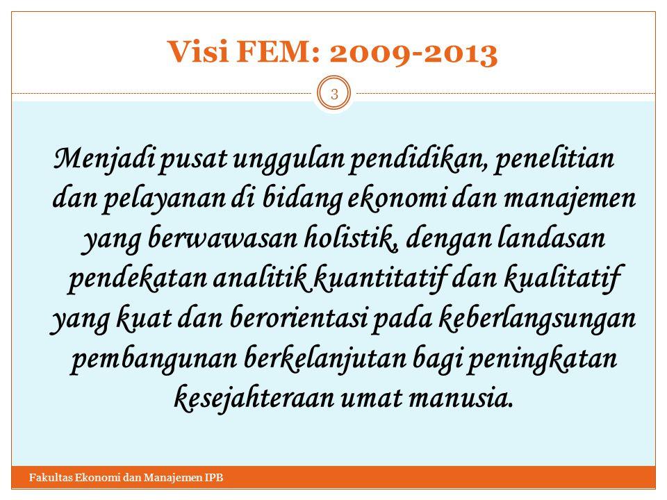 Visi FEM: 2009-2013