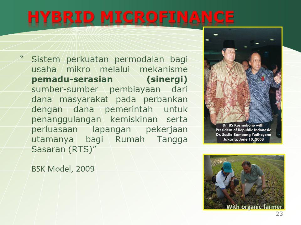 HYBRID MICROFINANCE BSK Model, 2009