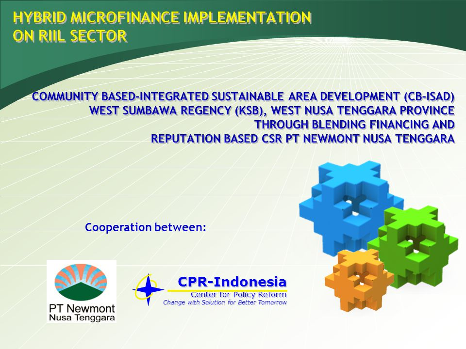 HYBRID MICROFINANCE IMPLEMENTATION ON RIIL SECTOR