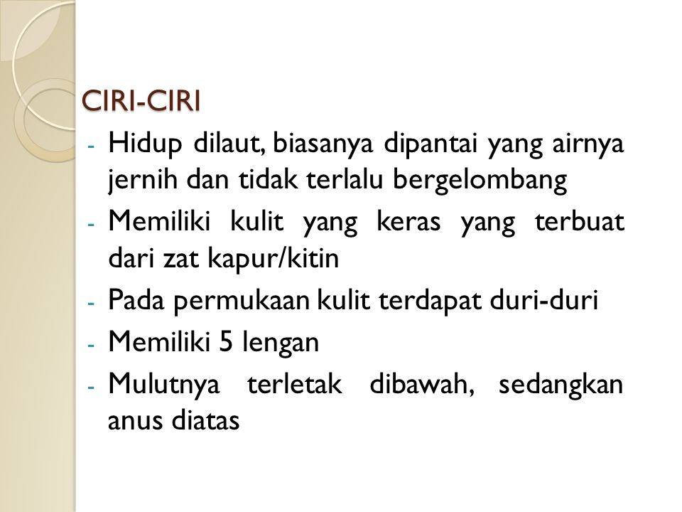 CIRI-CIRI Hidup dilaut, biasanya dipantai yang airnya jernih dan tidak terlalu bergelombang.
