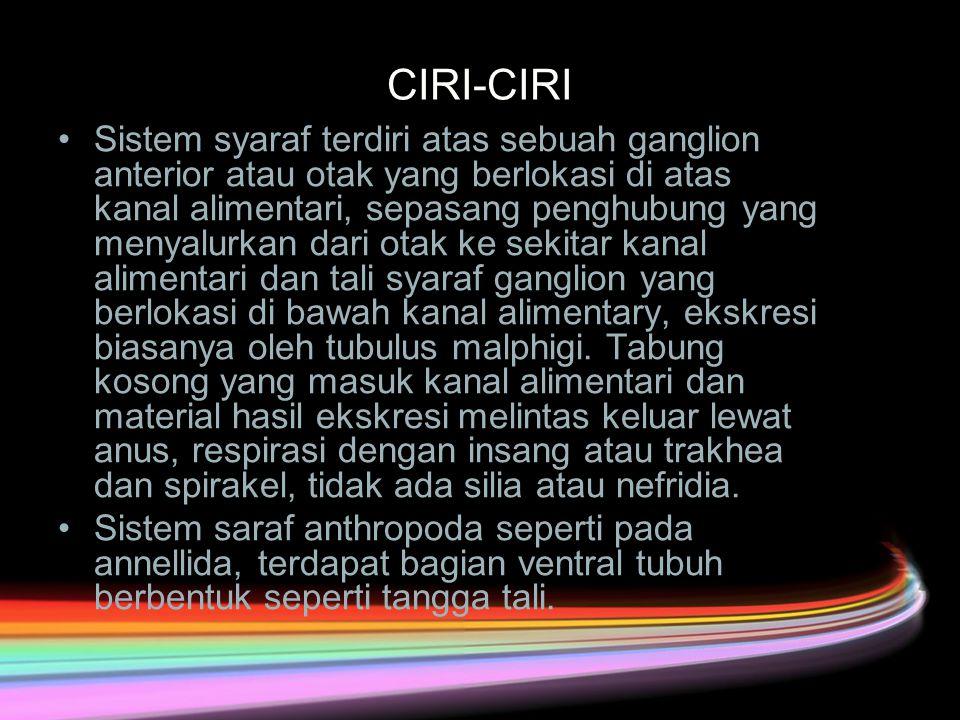 CIRI-CIRI