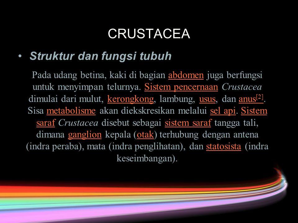 CRUSTACEA Struktur dan fungsi tubuh