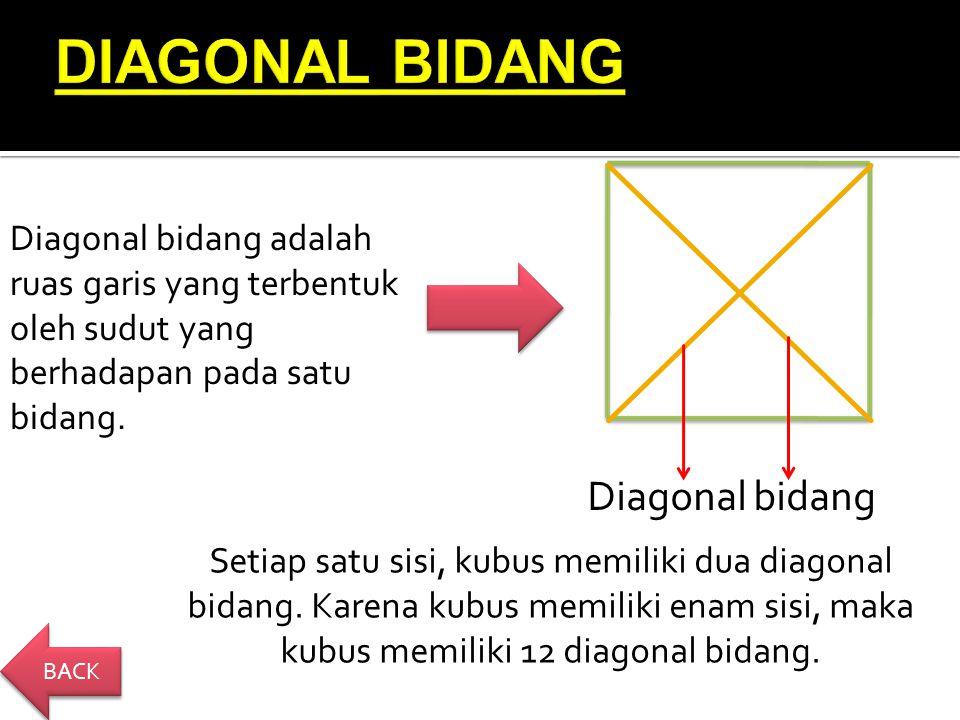 DIAGONAL BIDANG Diagonal bidang