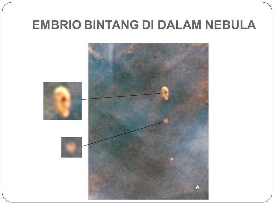 EMBRIO BINTANG DI DALAM NEBULA