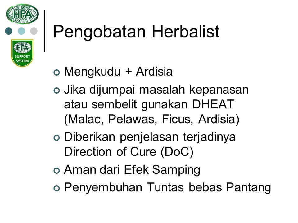 Pengobatan Herbalist Mengkudu + Ardisia