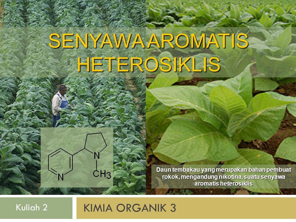 SENYAWA AROMATIS HETEROSIKLIS