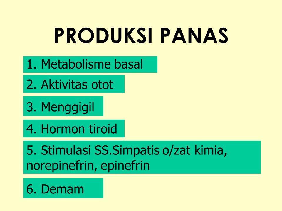 PRODUKSI PANAS 1. Metabolisme basal 2. Aktivitas otot 3. Menggigil