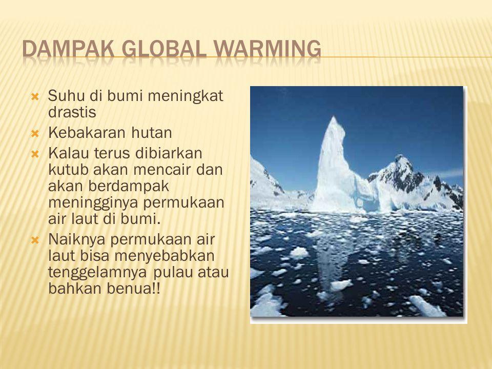 Dampak global warming Suhu di bumi meningkat drastis Kebakaran hutan