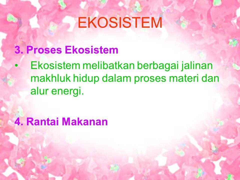 EKOSISTEM 3. Proses Ekosistem