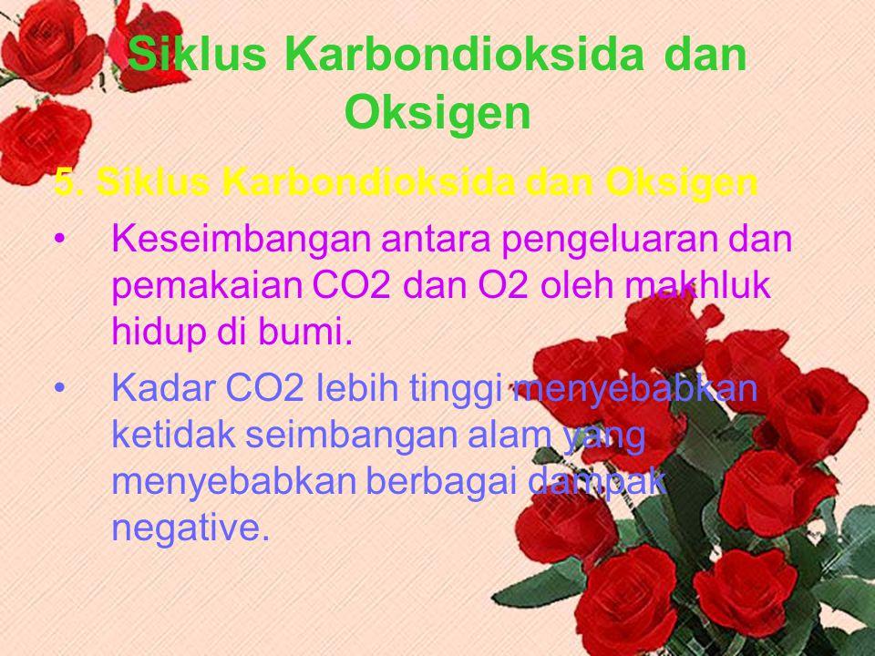 Siklus Karbondioksida dan Oksigen