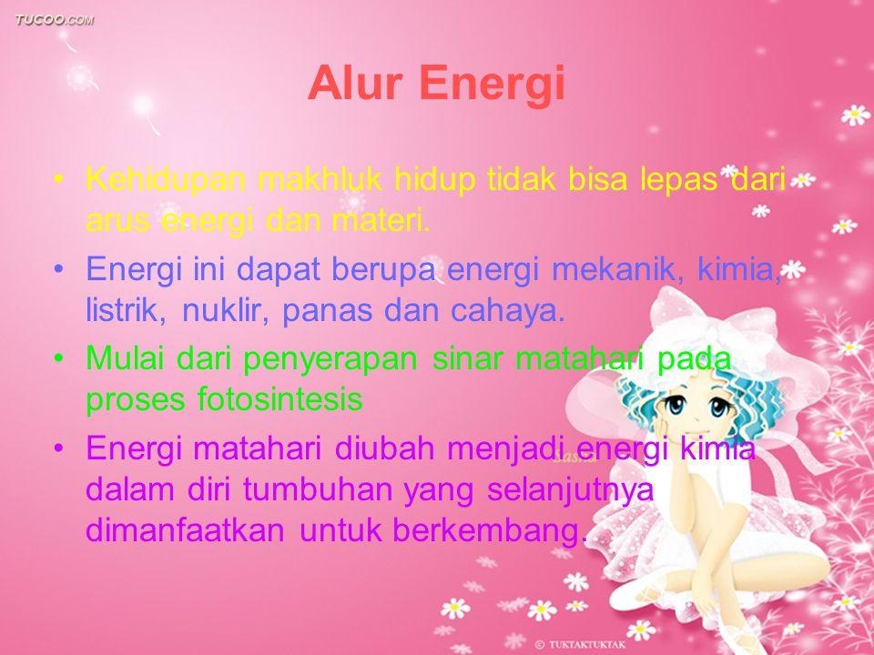 Alur Energi Kehidupan makhluk hidup tidak bisa lepas dari arus energi dan materi.