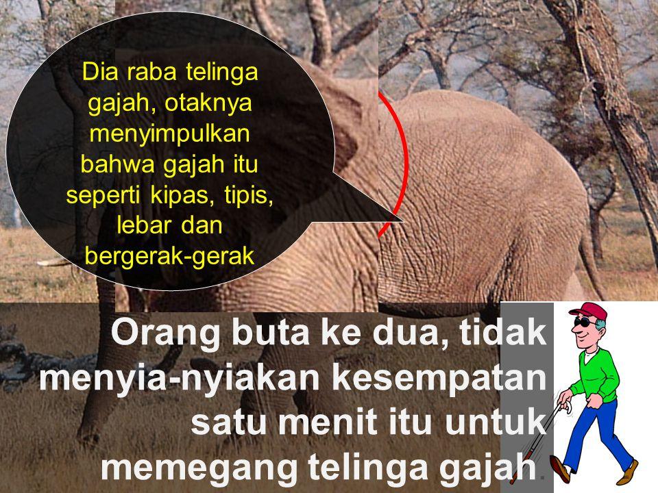 Dia raba telinga gajah, otaknya menyimpulkan bahwa gajah itu seperti kipas, tipis, lebar dan bergerak-gerak