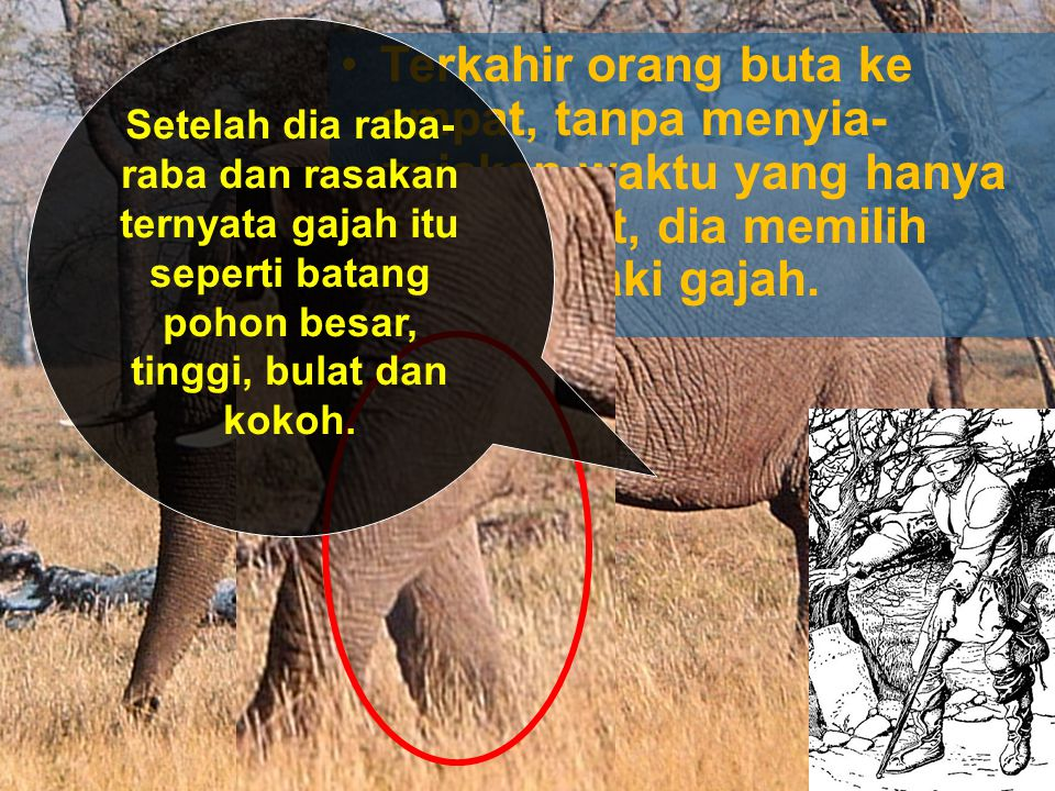 Setelah dia raba-raba dan rasakan ternyata gajah itu seperti batang pohon besar, tinggi, bulat dan kokoh.