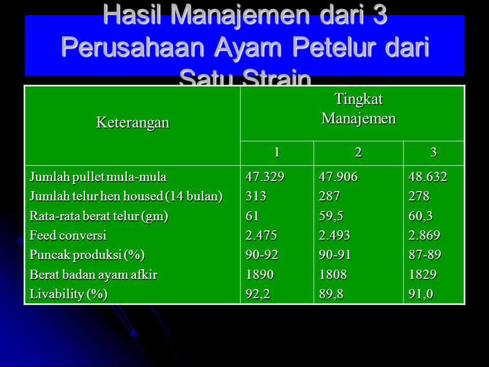 Hasil Manajemen dari 3 Perusahaan Ayam Petelur dari Satu Strain
