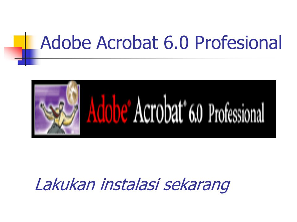 Adobe Acrobat 6.0 Profesional