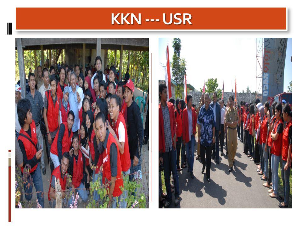 KKN --- USR