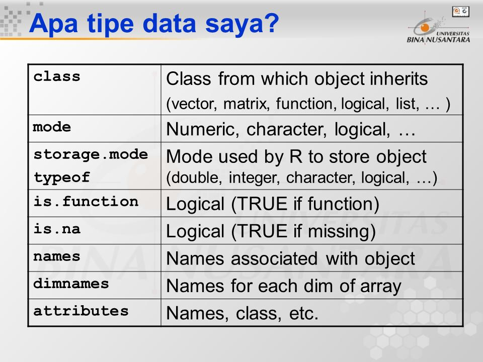 Apa tipe data saya Class from which object inherits