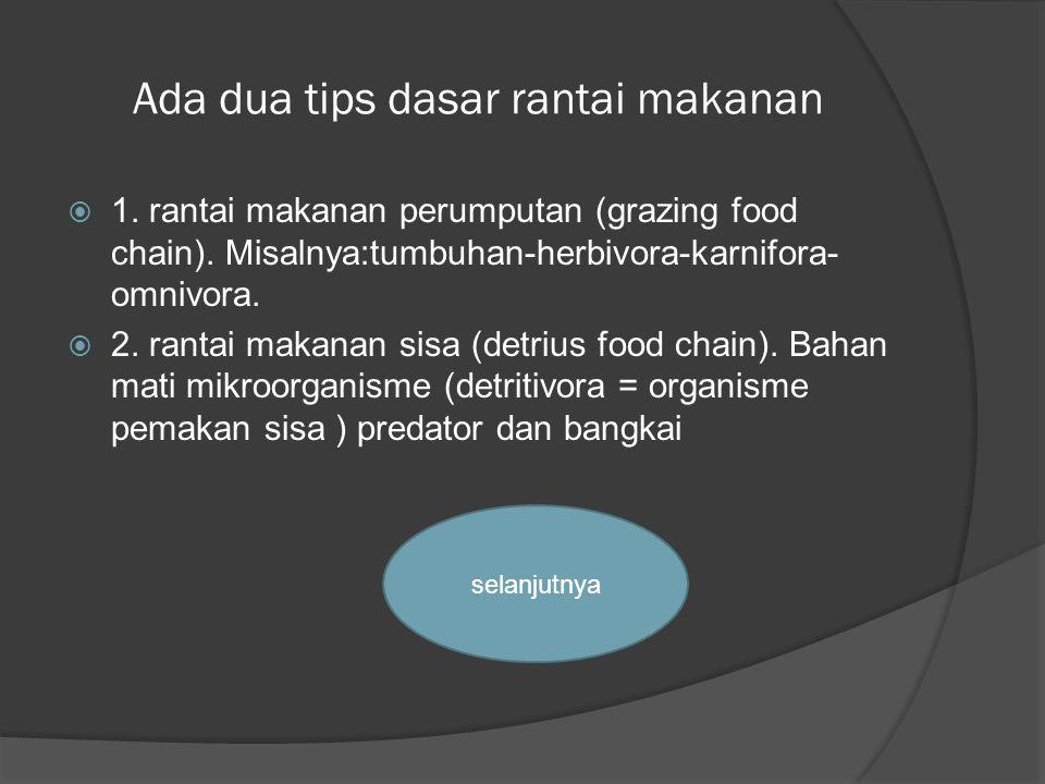 Ada dua tips dasar rantai makanan